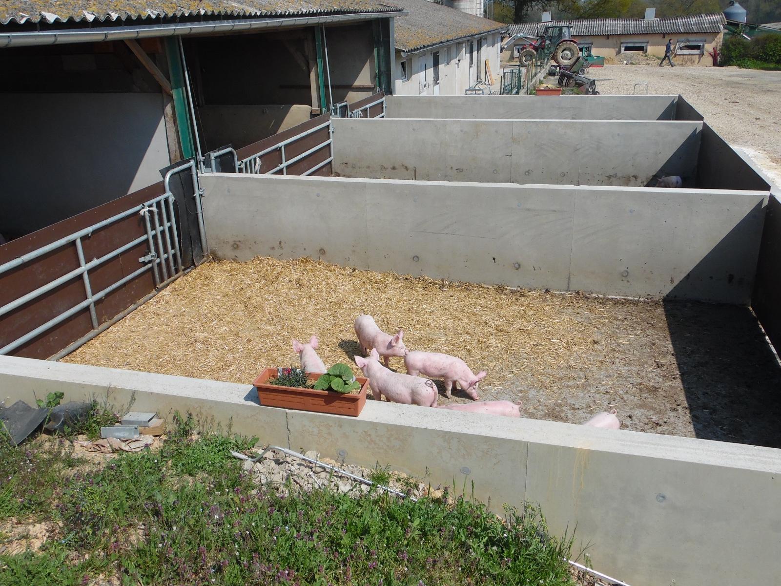 La Corbiniere Vente De Porc Mayenne Img 7